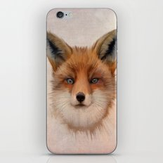 Vulpes vulpes - Red Fox iPhone & iPod Skin