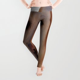Portrait of A Golden Labrador Dog Leggings