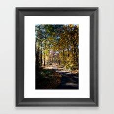 Kiroli Park, part two Framed Art Print