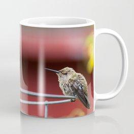 Meal Planning For Hummingbirds Coffee Mug