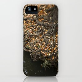 Fairytale Trees iPhone Case