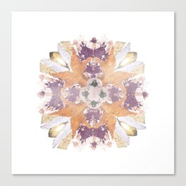 Kaleidoscope I Canvas Print