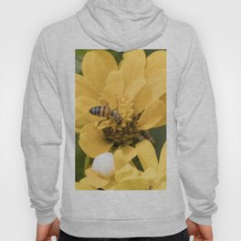 bee on flower Hoody