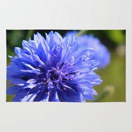 Cornflower blue Rug
