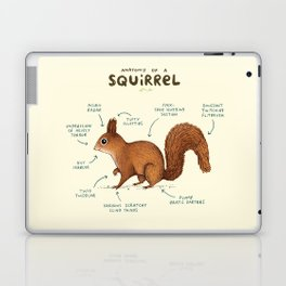 Anatomy of a Squirrel Laptop & iPad Skin
