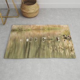 Duck Reflections Rug