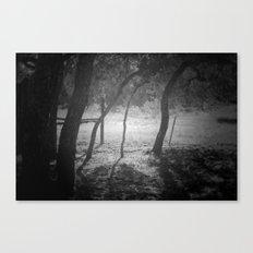 cottage sunrise Canvas Print