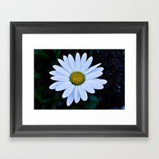 White and Yellow Daisy Framed Art Print
