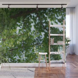 Ginkgo biloba tree in the city Wall Mural