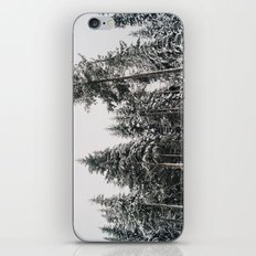 Snowy Paradise iPhone & iPod Skin