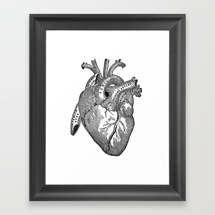 Vintage Anatomy Heart Framed Art Print by nectartea | Society6