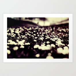 flowers field III Art Print
