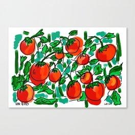 Vine Ripes Canvas Print