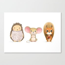 Hedghog, Mouse & Mr. Squirrel Canvas Print