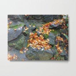 fall colours on mossy rocks Metal Print