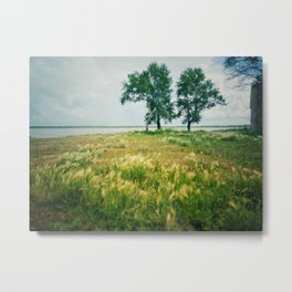 Summer on a village 4 Metal Print