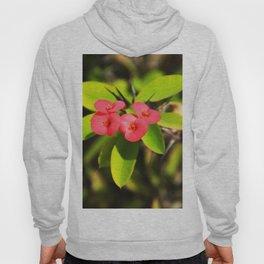 cactus flower Hoody
