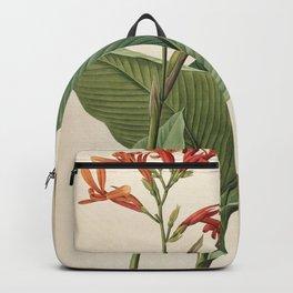 canna tuerckheimii (canna gigantea Redoute Roses ) Backpack