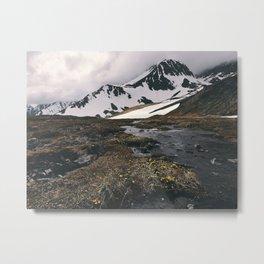 Alaskan mountain meadow Metal Print