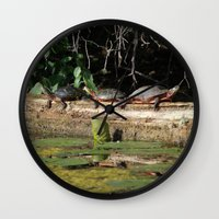turtles Wall Clocks featuring Turtles by Stu Willard