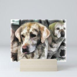 Labradors fun in the mud Mini Art Print