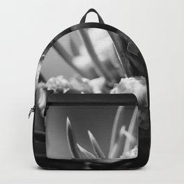 aspirations of the pinecone Backpack