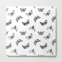 Autumn Night Moth White Metal Print