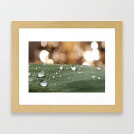 What's life if it's not sparkling? Framed Art Print