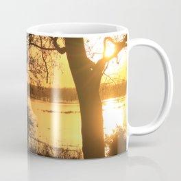Floodplain at Sunset 2 Coffee Mug