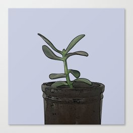 The Plant Bianca Watered Canvas Print