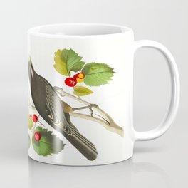Little Tawny Thrush, Ptiliogony's Townsendi, Canada Jay Coffee Mug
