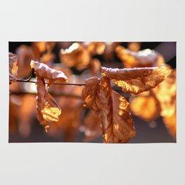 Golden February Rug