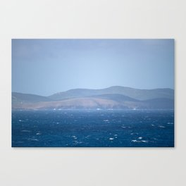 Island Life Canvas Print