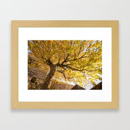 Protected and Protecting Framed Art Print
