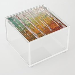 Birch Tree Forest Acrylic Box