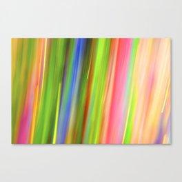 Paint & Sequins 8163 Canvas Print