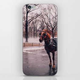NYC Horse and Carriage iPhone Skin