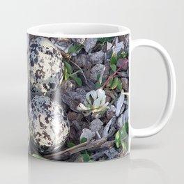 Killdeer eggs in nest Coffee Mug