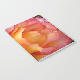 Dew Drop Fire Rose, 2012 Notebook