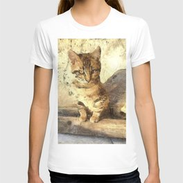 All Cats Are Black In The Dark T-shirt