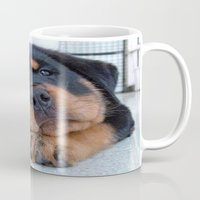 rottweiler Mugs featuring Riley  🐾  The Rottweiler Puppy  🐾 by D.A.S.E. 3