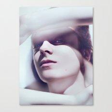 Dufa Canvas Print