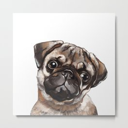 The Melancholy Pug Metal Print