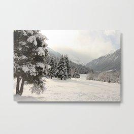 In The Wintertime Metal Print
