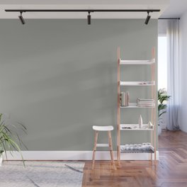 Light Grey 2 Solid Color Accent Shade Matches Sherwin Williams Gray Matters SW 7066 Wall Mural