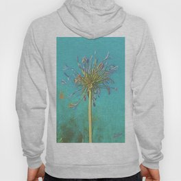 Agapanthus,, Lily of the Nile, African Lily. Purple Lilac Flower Hoody