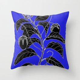 Western Nightshade (also know as Bush Tomato ) - Solanum chippendolei or Solanum coactilferum Throw Pillow