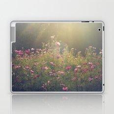 Cosmos in the Late Day Sun Laptop & iPad Skin