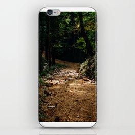 Trail Lights iPhone Skin