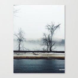 Schuylkill Canvas Print